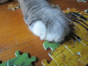 Cat's are good at puzzles