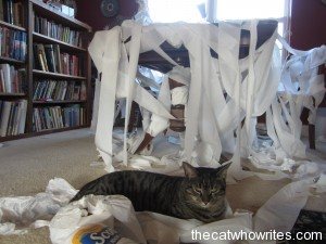 The toys toilet papered Mrs. Hodges writing desk.