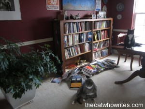 The toys pushed the books out of the bookcase.