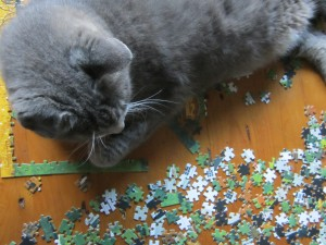 The best place for a cat to lay down is on a puzzle.